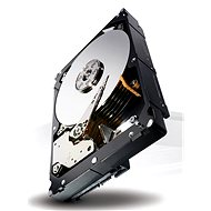 Seagate Constellation ES.3 2000GB