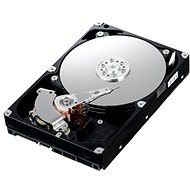 "IBM 3.5"" HDD 1000GB NL-SAS 6G 7200 ot. Hot-Swap"