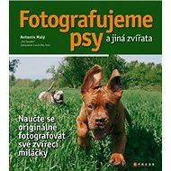 Fotografujeme psy - a jiná zvířata